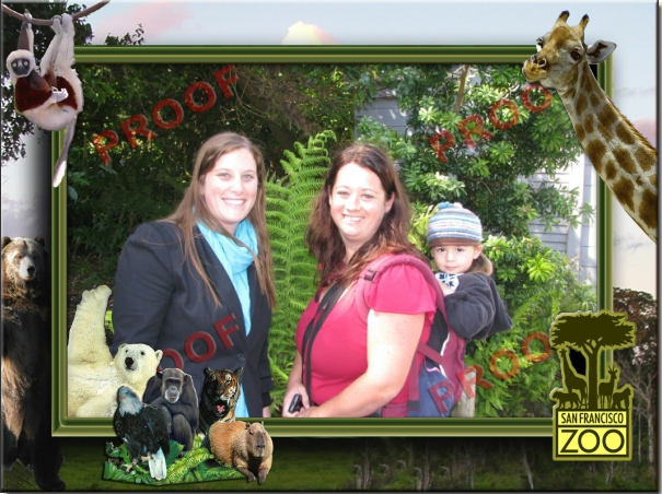 At_the_Zoo