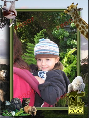 At_the_Zoo_2