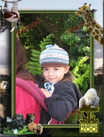 At_the_Zoo_2