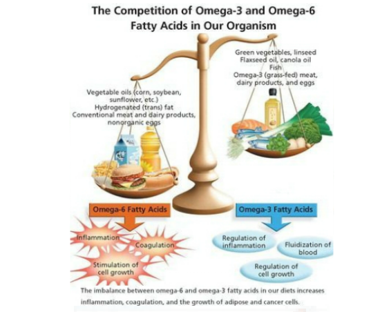 Omega_3s_vs_omega_6s