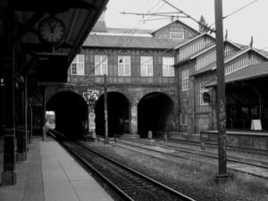Via_train